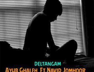 Navid Jomhoor Ft Ayub Ghaleh – Deltangam