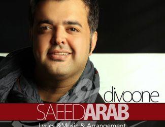 Saeed Arab – Divooneh