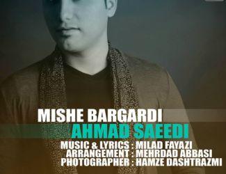 آهنگ جدید احمد سعیدی به نام میشه برگردی , بزودی