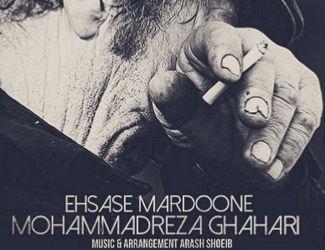 دانلود آهنگ جدید محمدرضا قهاری به نام احساس مردونه