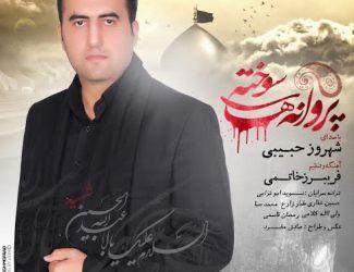 Shahrooz Habibi – Parvanehaye Sookhteh