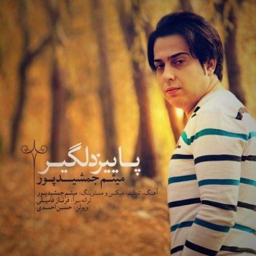 آهنگ جدید پاییز دلگیر از میثم جمشیدپور