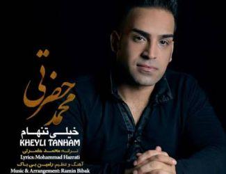 دانلود آهنگ جدید محمد حضرتی به نام خیلی تنهام