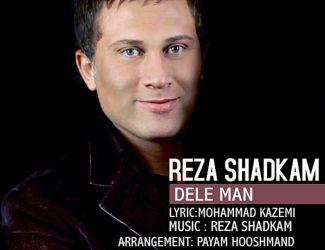 Reza Shadkam – Dele Man