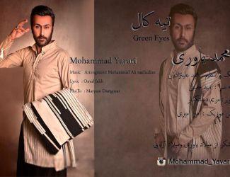 Mohammad Yavari – Green Eyes