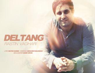 Rastin Vaghari – Deltang