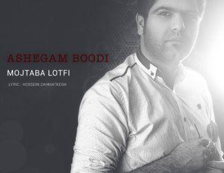 Mojtaba Lotfi – Ashegam Bodi