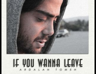 Ardalan Tomeh – If You Wanna Leave