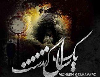 دانلود آهنگ جدید محسن کشاورز سامان لی 2
