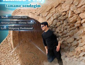 دانلود آهنگ جدید احمد فیلی به نام مادر