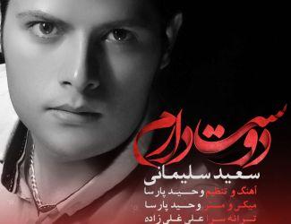 دانلود آهنگ جدید سعید سلیمانی به نام دوستت دارم