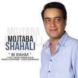 دانلود آهنگ جدید مجتبی شاه علی به نام بی رحم