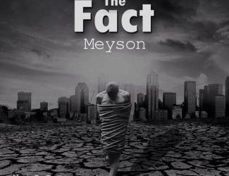 دانلود آهنگ جدید Meyson به نام The Fact