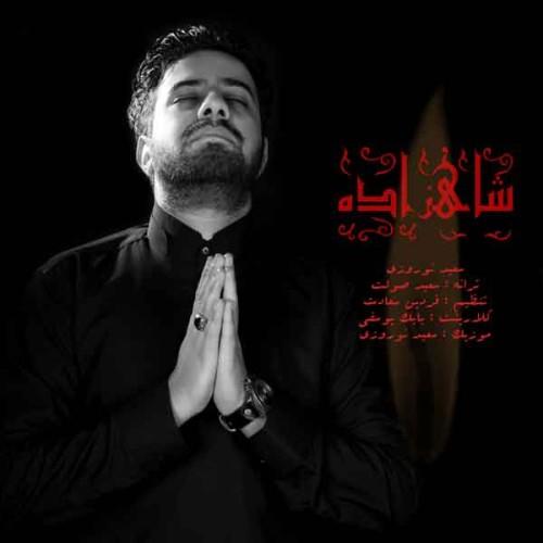 دانلود آهنگ جدید سعید نوروزی به نام شاهزاده
