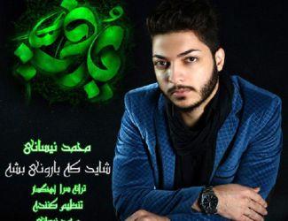 دانلود آهنگ جدید محمد نیسانی به نام شاید که بارونی بشه
