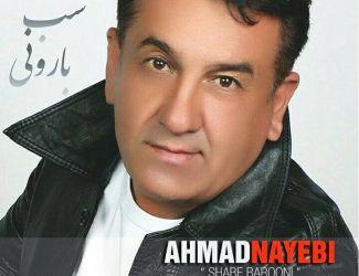 دانلود آهنگ جدید احمد نایبی به نام شب بارونی