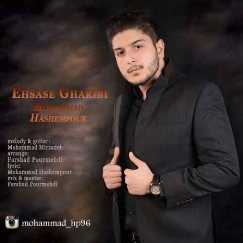 دانلود آهنگ جدید محمد هاشم پور به نام احساس غریبی