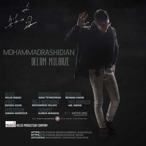 دانلود آهنگ جدید محمد رشیدیان به نام دلم میلرزه