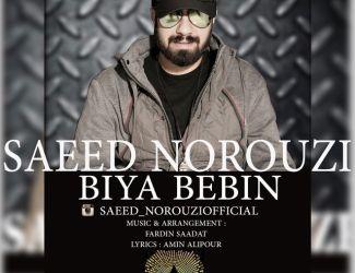 دانلود آهنگ جدید سعید نوروزی به نام بیا ببین