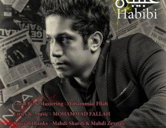 دانلود آهنگ جدید محمد فلاح به نام حبیبی
