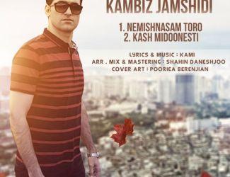 دو آهنگ جدید کامبیز جمشیدی