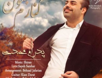 دانلود آهنگ جدید پدرام محمدی به نام کنارم بمون