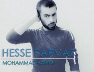 دانلود آهنگ جدید محمد کریمی به نام حس پرواز