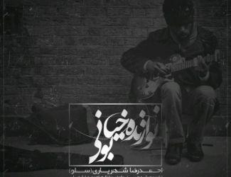دانلود آهنگ جدید احمدرضا شهریاری(سلو) به نام نوازنده خیابونی