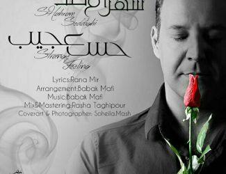 دانلود آهنگ جدید شهرام صدیقی بنام حس عجیب