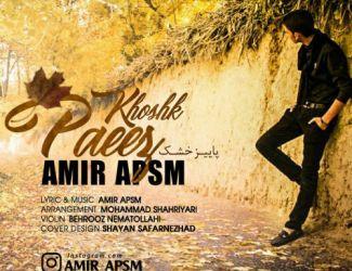 دانلود آهنگ جدید امیر APSM بنام پاییز خشک