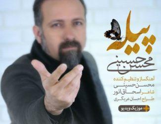 دانلود آهنگ جدید محسن حسینی بنام پیله