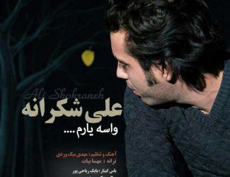 دانلود آهنگ جدید علی شکرانه بنام واسه یارم