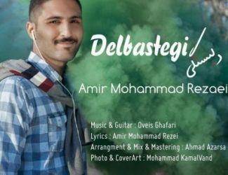 دانلود آهنگ جدید امیر محمد رضایی بنام دلبستگی