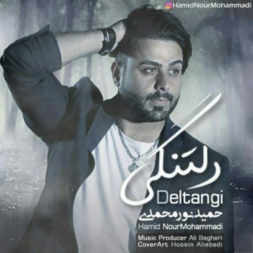 دانلود آهنگ جدید حمید نورمحمدی بنام دلتنگی