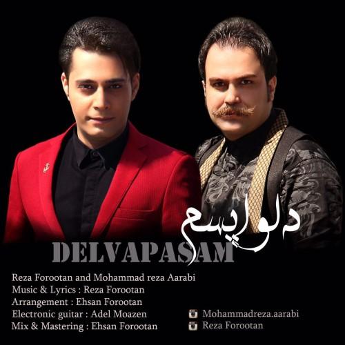 دانلود آهنگ جدید محمدرضا عربی و رضا فروتن به نام دلواپسم