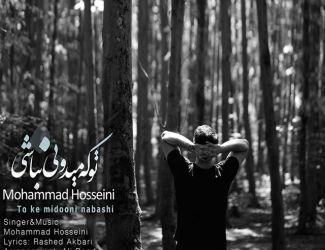 دانلود آهنگ جدید محمد حسینی به نام تو که میدونی نباشی