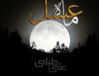 دانلود آهنگ جدید علی جلیلی به نام ماه عسل