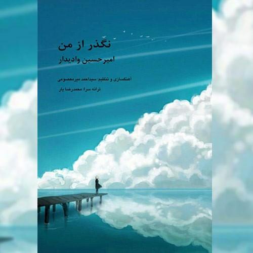 دانلود آهنگ جدید امیر حسین وادیدار بنام نگذر از من