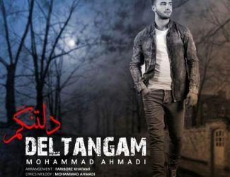 دانلود آهنگ جدید محمد احمدی بنام دلتنگم