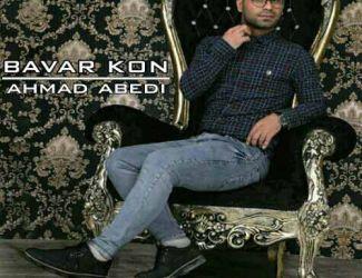 دانلود آهنگ جدید احمد عابدی بنام باور کن