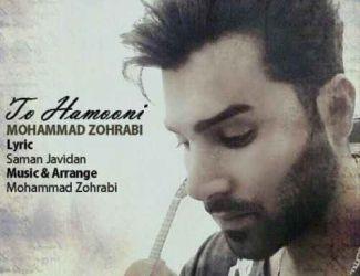 دانلود آهنگ جدید محمد ظهرابی بنام تو همونی