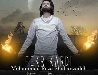 دانلود آهنگ جدید محمدرضا شعبانزاده بنام فکر کردی