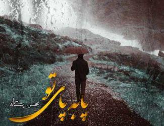 دانلود ریمیکس آهنگ جدید محسن یگانه بنام پا به پای تو