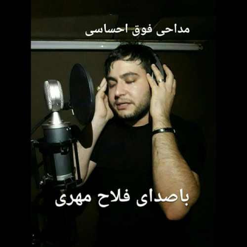 دانلود آهنگ جدید فلاح مهری بنام نخل شکیا