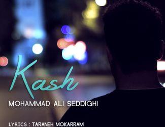 دانلود آهنگ محمد علی صدیقی به نام کاش
