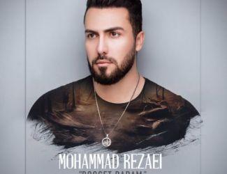 دانلود آهنگ محمد رضایى به نام دوست دارم