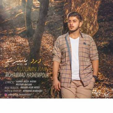 دانلود آهنگ جدید محمد هاشم پور بنام درد پاییزی