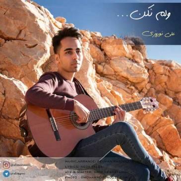 دانلود آهنگ جدید علی نوروزی به نام ولم نکن