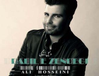 دانلود آهنگ علی حسینی بنام دلیل زندگی