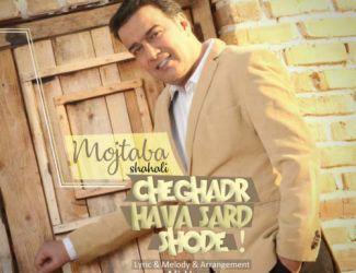 دانلود آهنگ جدید مجتبی شاه علی بنام چقدر هوا سرد